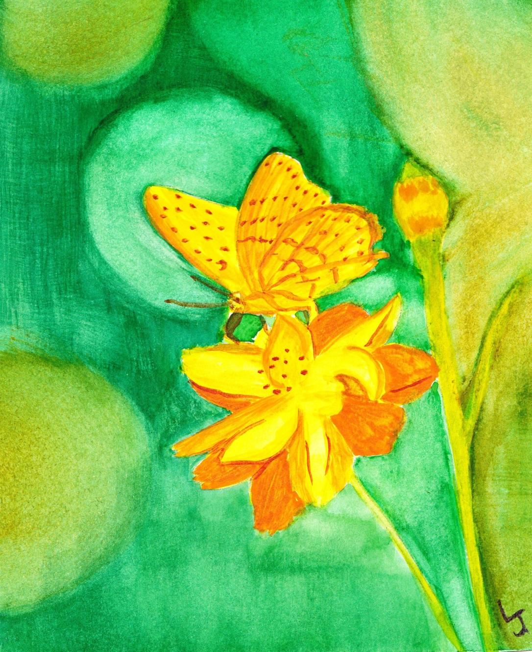 ButterflyFlower03221015
