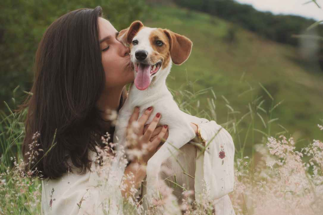 close up photo of woman kissing a dog